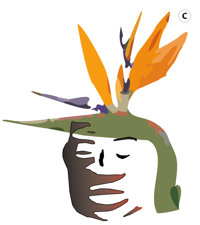 Letra Del Ano 2018 Asociacion Cultural Yoruba De Canarias A C Y C